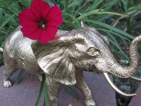 elephantplanter