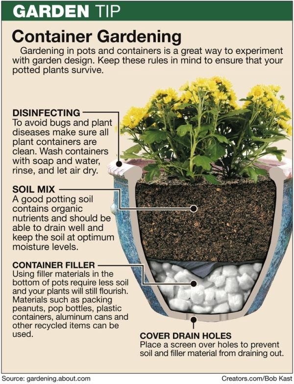 Container Gardening For Beginners Flymeawaycreations