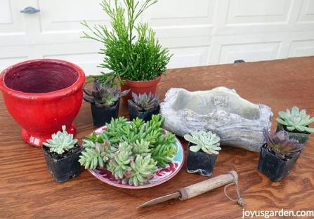 A-red-pot-small-log-cement-planter-small-succulents-succulent-cuttings-sit-on-a-table.succulents-container-gardening_new